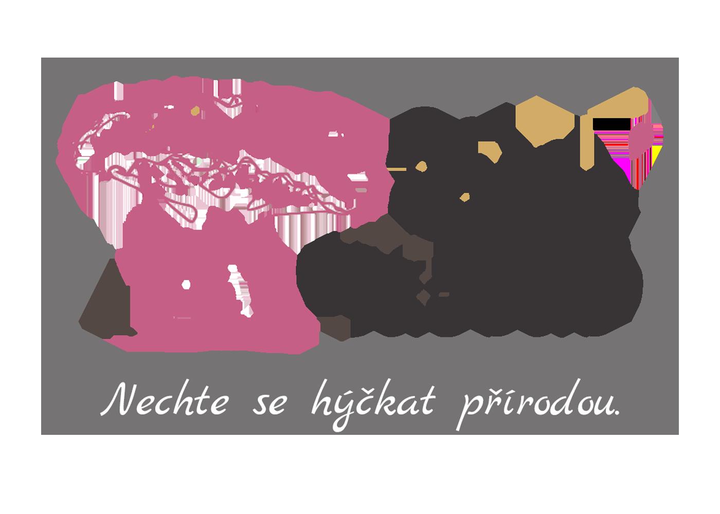 Salon Baobab